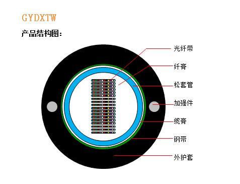 GYDXTW结构图.jpg