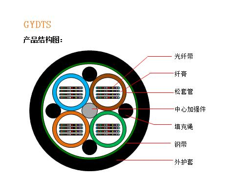 GYDTS结构图.jpg